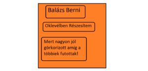 Berni